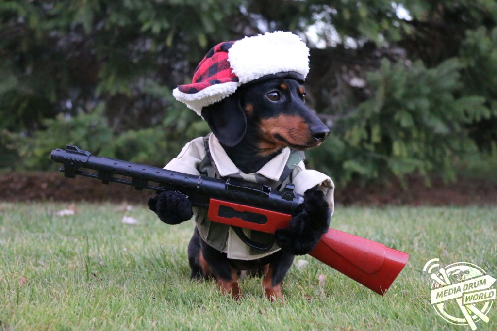 Duck Season Dachshunds