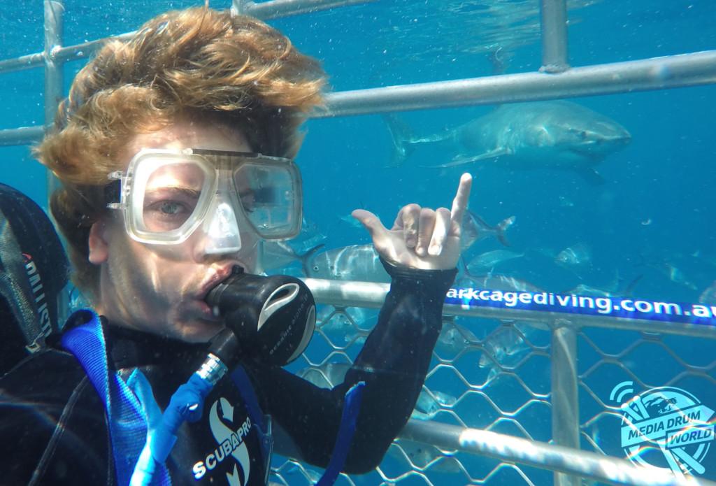 Shark Selfies