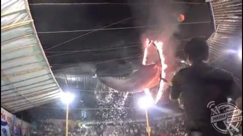 DISTURBING footage has emerged that shows dolphins being made to jump through flaming hoops at an animal show.