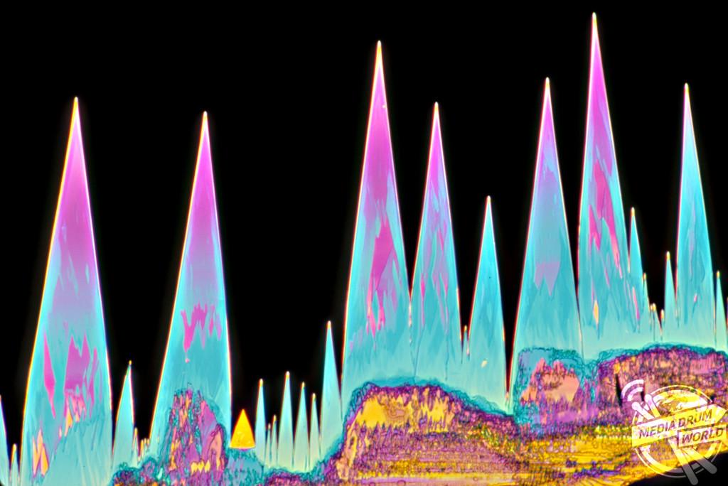 Light micrograph (LM) of St. John's Wort crystals. Dennis Kunkel / SPL / mediadrumworld.com