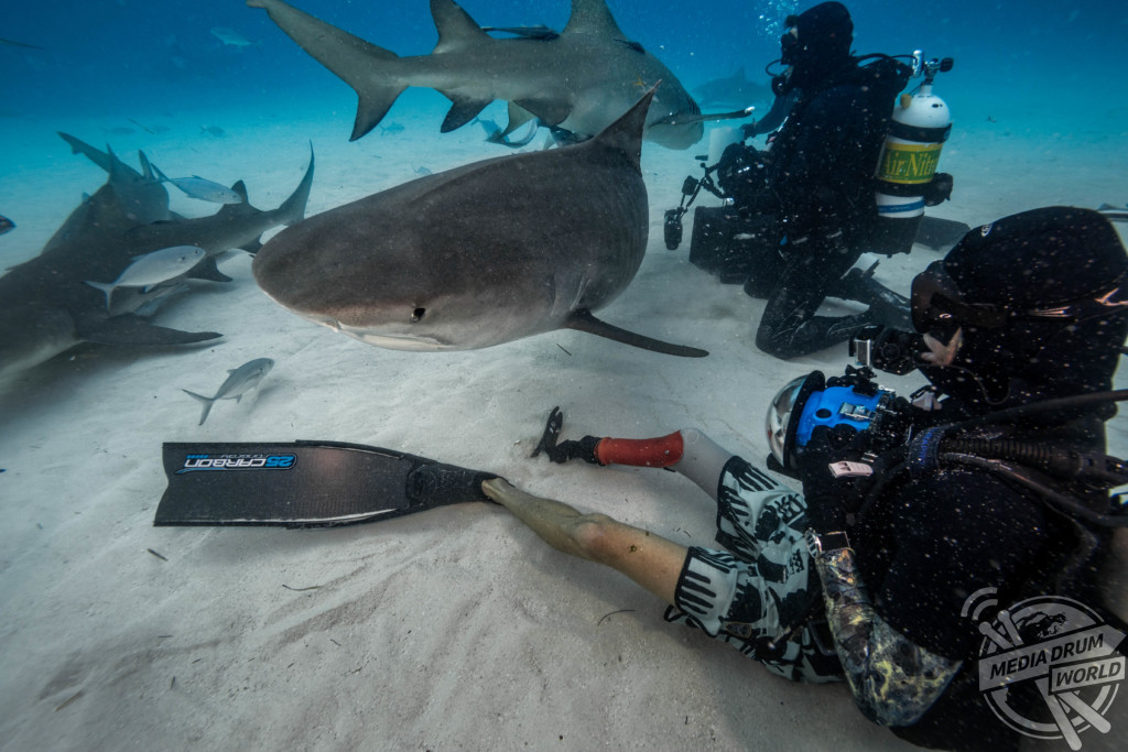 Mike Coots with a tiger shark. Steve Hinczynski / mediadrumworld.com